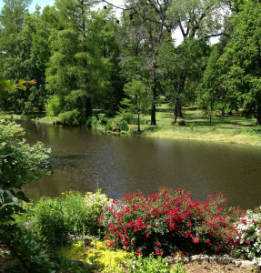 Bartlett Arboretum in Wichita, Kansas
